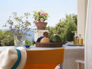 Ploes Villas-Sky Villa- Ionian beach, Anc. Olympia, Skafidia