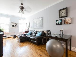 Gorgeous, clean 1 bedroom in Times Square, New York
