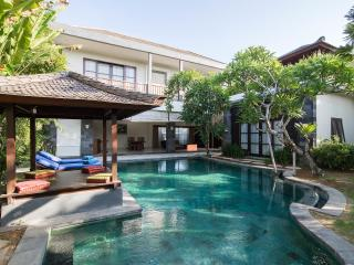 Villa Fanisa Canggu 3 BDR private pool near Echo Beach