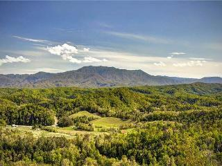 ON EAGLE'S WINGS- BREATHTAKING MOUNTAIN VIEWS! 3/2, Sevierville