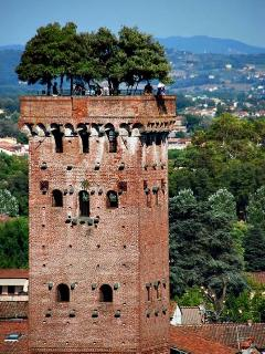The tower in Lucca