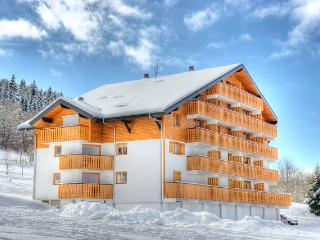 Stylish Apartment French Alps Ski or Summer Breaks, Thollon-les-Mémises