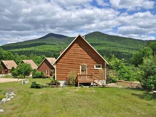 3 BR w/ Mtn Views,Sauna,Cable,Wifi. Pets Welcome! 5 min to Storyland!