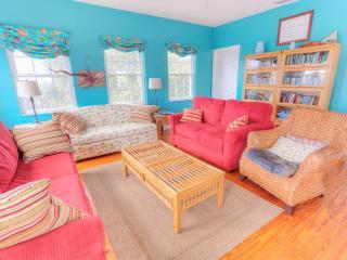 Villa Villekula House, 4 bedrooms, secluded beach, HDTVs, steps to ocean, Saint Augustine