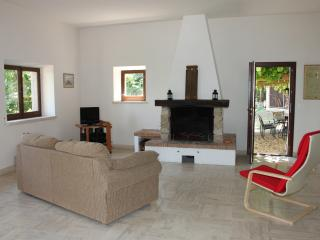 Lounge Area with Log Fireplace, leading to the private garden.