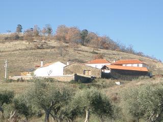 Heritage organic farm., Vila Real