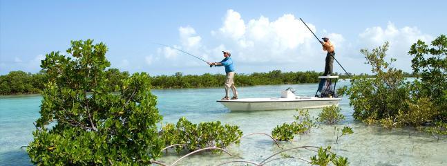Flyfishing in the mangroves