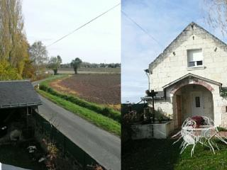 Holiday gite in Varennes Sur Loire