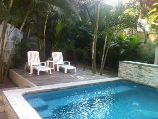 Casa Esmarelda 4 BR house two blocks from the beac, San Pancho