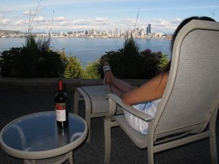 West Seattle, 180 degree bluff view