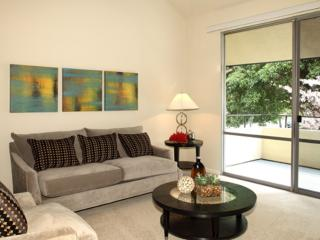 ELEGANT FURNISHED 3 BEDROOM 2 BATHROOM APARTMENT, Mountain View