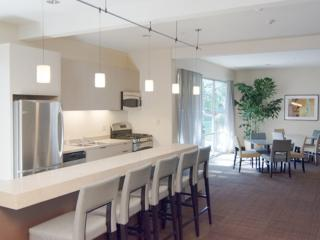 PREPOSSESSING FURNISHED 1 BEDROOM 1 BATHROOM APARTMENT, Mountain View