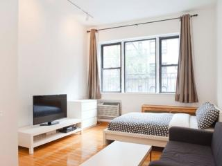 BEAUTIFUL AND FURNISHED STUDIO APARTMENT, New York City