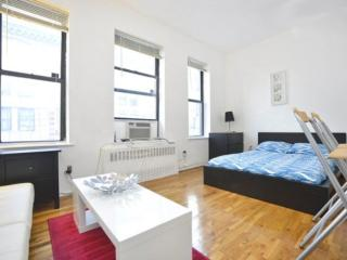 Nice Studio Apartment in New York - Next to Central Park, Nova York