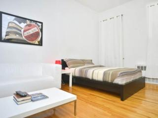 Furnished Studio Apartment at 3rd Ave & E 82nd St New York