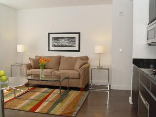 SPOTLESS 1 BEDROOM 1 BATHROOM FURNISHED APARTMENT, New York City
