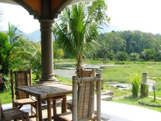 Tranquil Village - Standard Room, Bukit Lawang