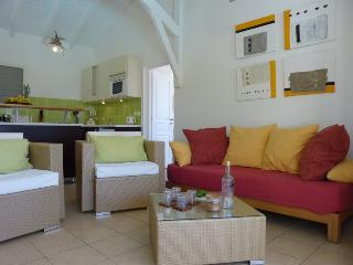 villa iguane house salon