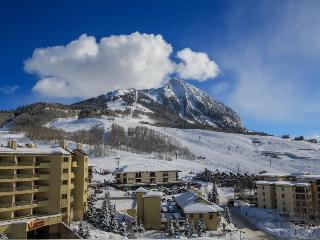 Cozy home w/amazing views, shared hot tub! Walk to slopes & enjoy free shuttle!, Crested Butte