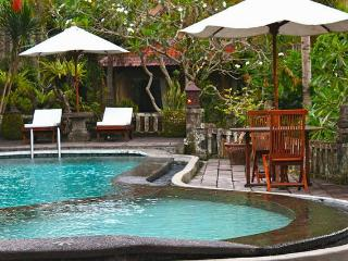 Hibiscus Room at Sakti Resort  10 mnt to Ubud City, Kedewatan
