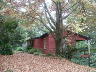 Private rainforest cottage 40mins from the city