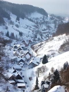Lerbachtal Winterzeit