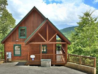 Tranquility a two bedroom cabin located minutes from the tranquil Smoky Mtns.