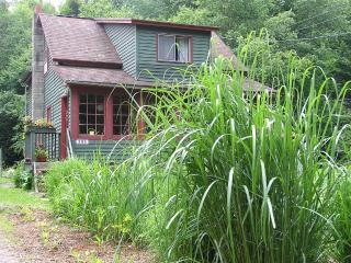 Charming brookside Catskills getaway!, Margaretville