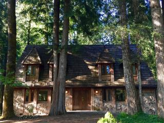 Charming Alpine Chalet w/ Private Hot Tub, Rhododendron