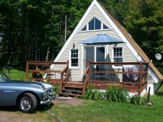 Cozy Catskill Cottage- Secluded Acres, Mt. Views, Stamford