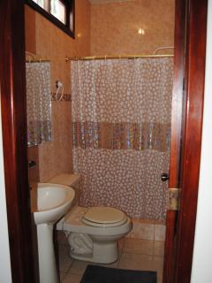 1 Br Apt bath room
