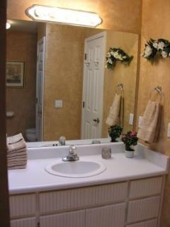 Master Bathroom vanity!