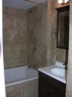 Master Bathroom with Jacuzzi Tub + Shower