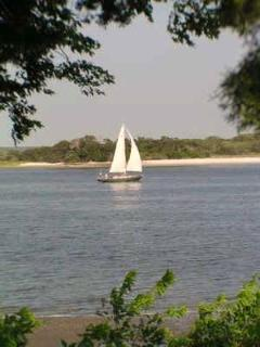 Go Sailing on Amelia River
