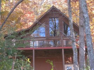 Murphy NC Cabin with free wi-fi