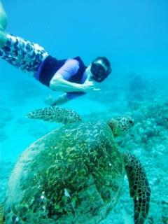 Great Snorkeling close by