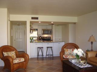 Spacious, Updated 1st Floor Condo WIFI/HDTV & w/d, Siesta Key