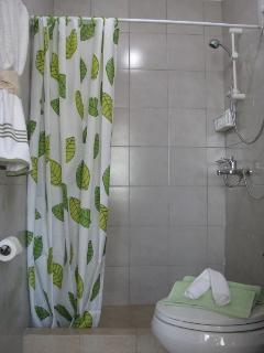 Master's Toilet/Bathroom