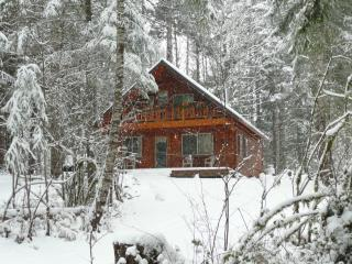 Midweek Special Feb 8-11 $99/nt for 2 guests, Packwood