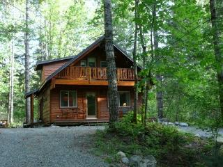 Family Friendly, affordable, clean and cozy, Packwood