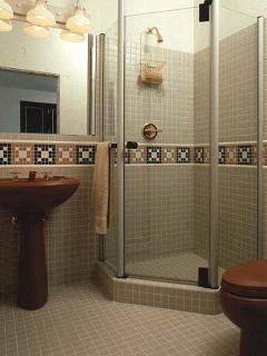 Lower level shower bath