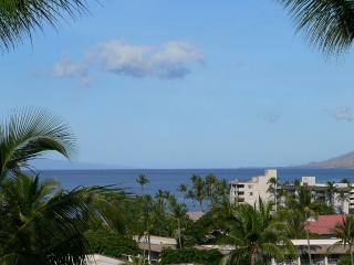 Spectacular Ocean Views - South Maui Condos, Kihei