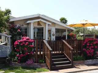 Bucks Beach Bungalow-7doors to Beach, Hot Tub etc, Santa Cruz