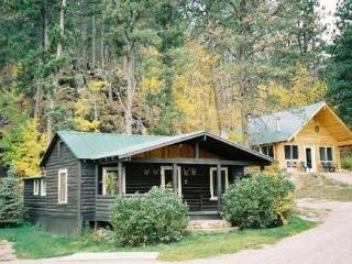 Black Hills Cabins near Mt. Rushmore, Crazy Horse, Hill City