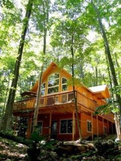 Cedar Lake Lodge - 2 acres privacy