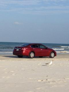 Or cruise the beach in your own car....so much fun!