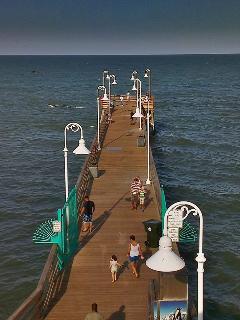Daytona Pier - 1 mile north of beach house