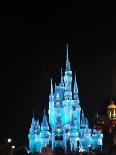 Visit Disney World
