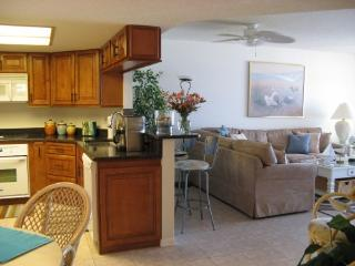 BEACHFRONT CONDO, CLEAN AND UPDATED, Indian Shores