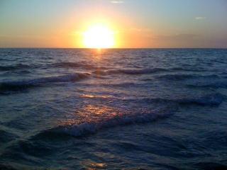 Beach Condo at Indian Shores, FL